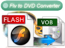 flv to dvd converter
